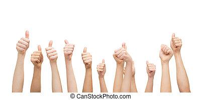 esposizione, mani in alto, pollici