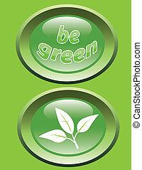 essere, bottoni, lucido, verde