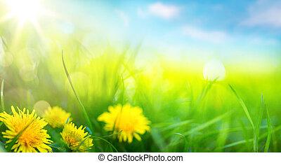 estate, arte, primavera, astratto, fondo, fresco, erba, o