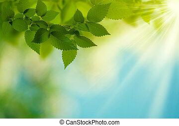 estate, bellezza, astratto, sfondi, day., ambientale, disegno, tuo