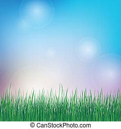estate, erba, sfondo verde