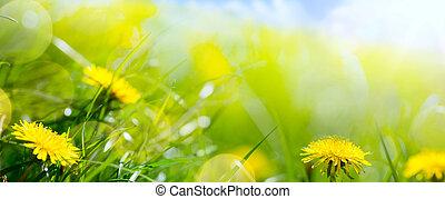 estate, fiore, arte, primavera, astratto, fondo, floreale, fresco, erba, o