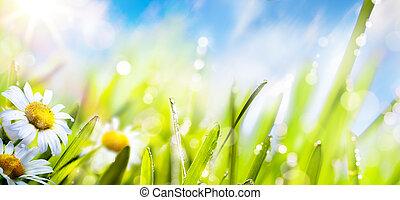 estate, fiore, arte, primavera, cielo, fresco, sole, background;, erba