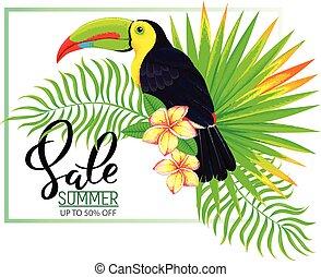 estate, foglie, vendita, tucano, fiori, composizione