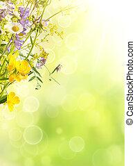 estate, fondo, fiori