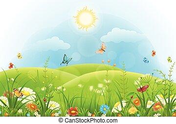 estate, fondo, floreale