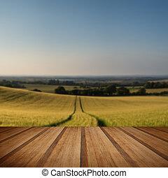 estate, frumento, pavimento, campagna, campo, tramortire, tramonto, assi legno, paesaggio