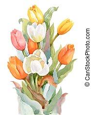 estate, giardino fiore, tulips, acquarello, fondo., azzurramento, bianco
