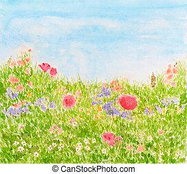 estate, luce giorno, fiori, prato