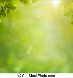 estate, naturale, astratto, sfondi, bokeh, foresta, fogliame, fresco