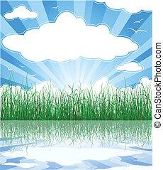 estate, nubi, soleggiato, erba, fondo, acqua