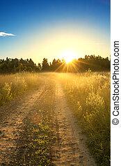 estate, paesaggio, alba, rurale