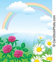 estate, paesaggio, arcobaleno