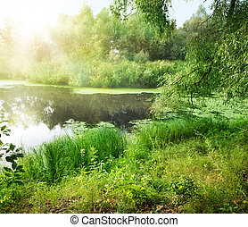 estate, paesaggio fiume
