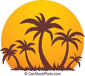 estate, palma, tramonto, albero