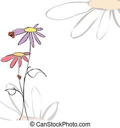 estate, primavera, fondo, floreale, coccinelle, bianco