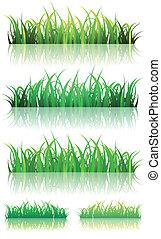 estate, set, primavera, erba verde, o
