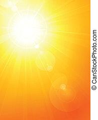 estate, sole, lente, caldo, vibrante, fl