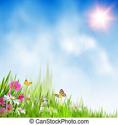 estate, time., sfondi, astratto, ambientale