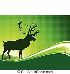 estratto verde, cervo, fondo