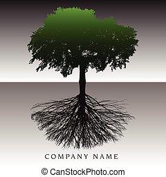 etereo, albero, radici, fondo