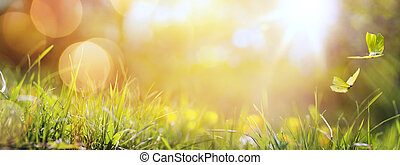 farfalla, estate, arte, primavera, astratto, fondo, fresco, erba, o