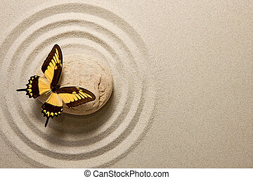 farfalla, pietra, zen