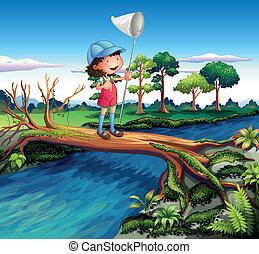 farfalla, presa a terra, incrocio, ragazza, fiume, rete