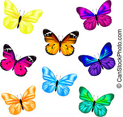 farfalla, set, icona