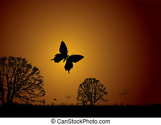 farfalla, tramonto, natura