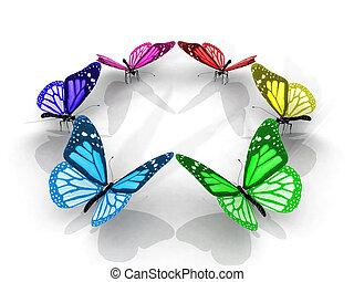 farfalle, cerchio, colorito