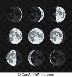 fasi, vettore, set, luna
