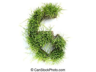 fatto, -, numeri, erba, 6