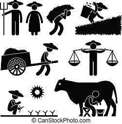 fattoria, agricoltura, lavoratore, contadino