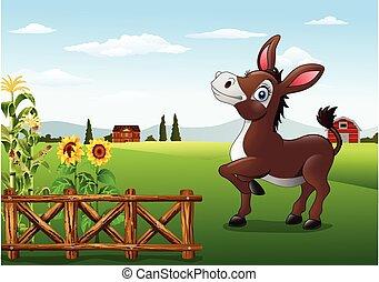fattoria, asino, felice, indietro, cartone animato