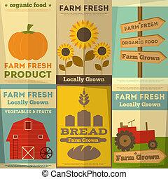 fattoria, cibo, set, organico, manifesti