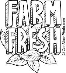 fattoria fresca, schizzo, cibo