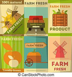 fattoria fresca, set, manifesti