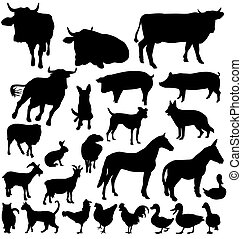 fattoria, silhouette, set, animale