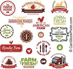 fattoria, vendemmia, etichette, moderno