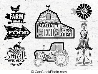 fattoria, vendemmia