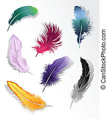 feather%u2019s, set, variopinto