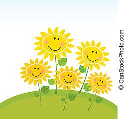 felice, girasoli, giardino, primavera
