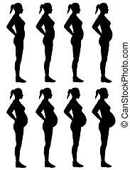 femmina, silhouette, palcoscenici, gravidanza