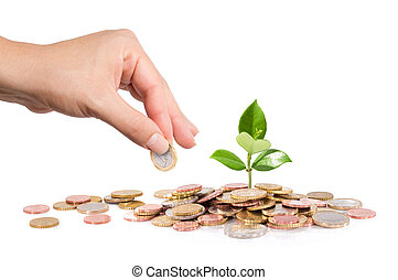 finanza, affari, -, start-up, nuovo