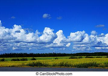 finlandese, paesaggio