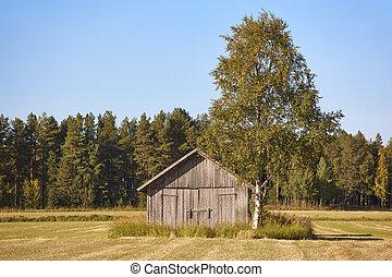finlandia, finlandese, legno, countryside., tradizionale, fattoria, paesaggio