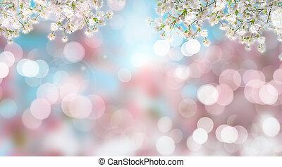 fiore, ciliegia, defocussed, fondo