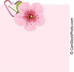 fiore, ciliegia, lettera