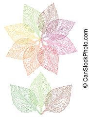 fiore, foglia, colorito